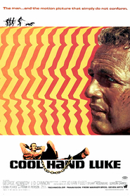 Best Cool Hand Luke wallpapers.