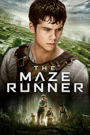 Best The Maze Runner wallpapers.