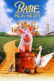 Best Babe: Pig in the City wallpapers.