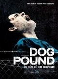 Best Dog Pound wallpapers.