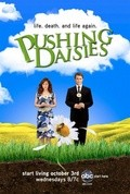 Best Pushing Daisies wallpapers.